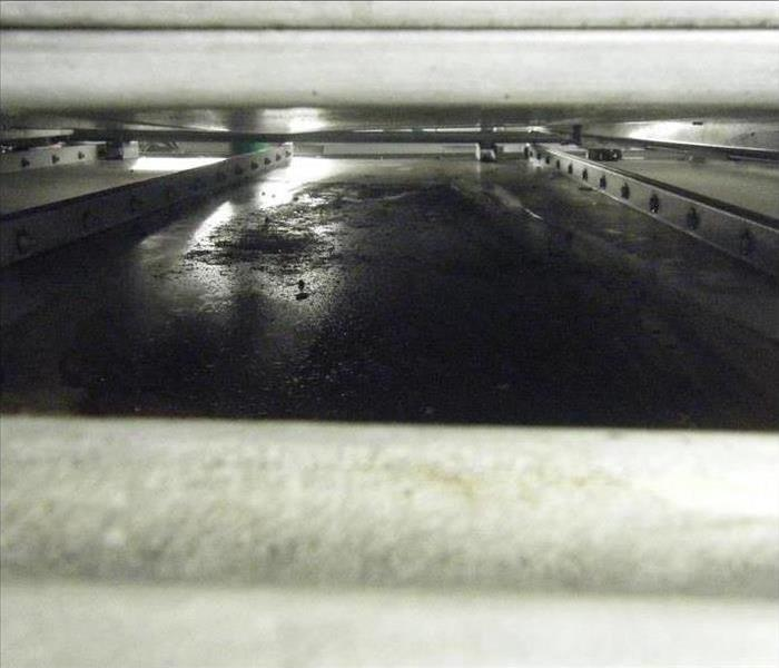 Under commercial refrigerator, coated in soot