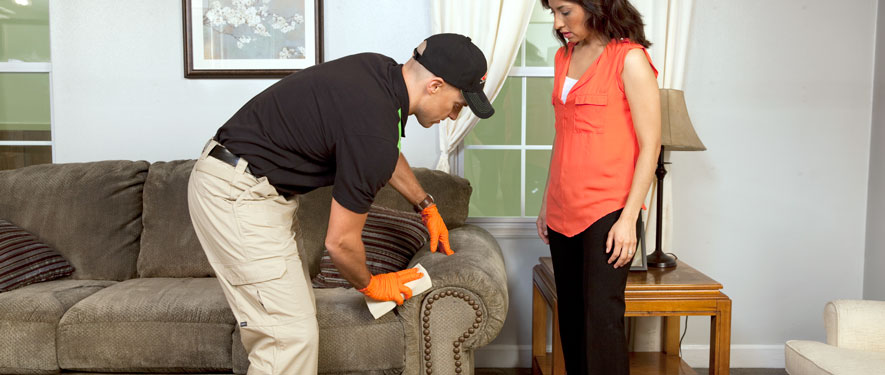 Concord, CA carpet upholstery cleaning